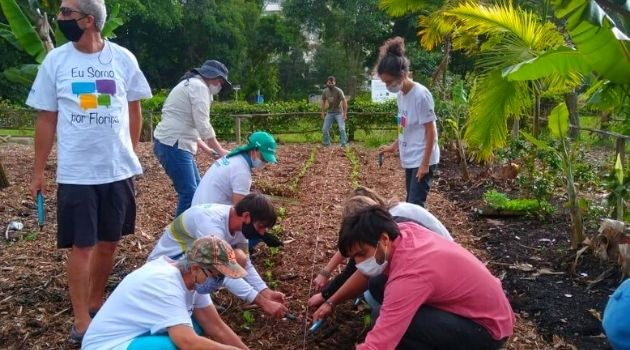 Horta do Jardim Botânico de Florianópolis é revitalizada