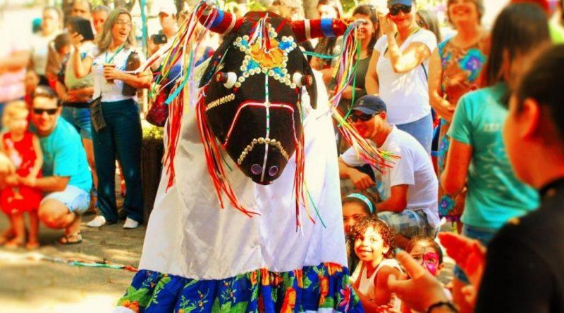A tradição popular do Boi de Mamão de Santa Catarina.