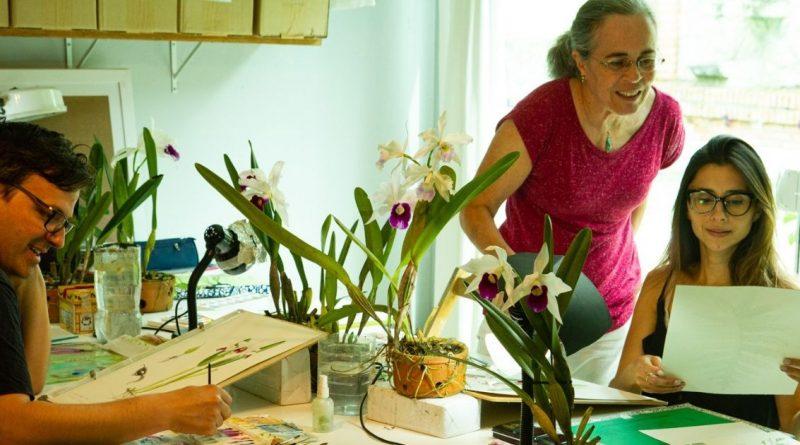 Orquídea símbolo de Santa Catarina é tema de exposição em Floripa.